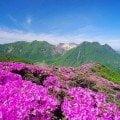 Mt. Hijidake