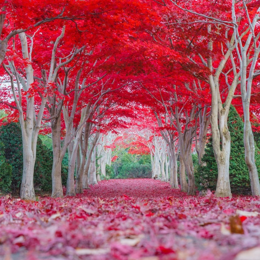 Hiraoka Jugei Center   Stunning Views