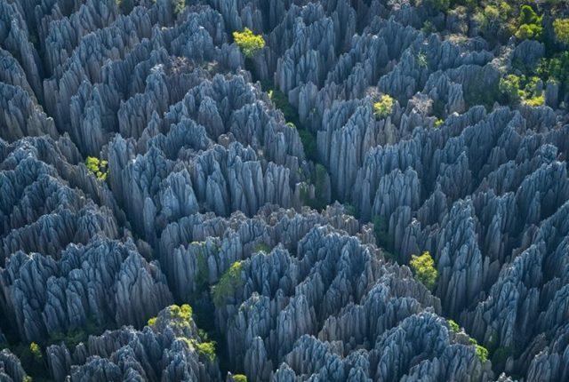Tsingy de Bemaraha Strict Nature Reserve, Madagascar