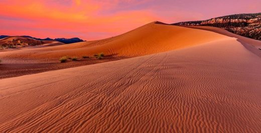 Coral Pink Sand Dunes State Park, Utah, United States