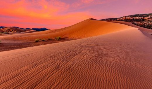 Coral Pink Sand Dunes State Park, Utah, United States