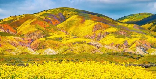 Carrizo Plain National Monument, California, United States