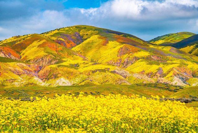 Carrizo Plain National Monument, California, United States
