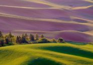Steptoe Butte State Park, Palouse, Washington, United States