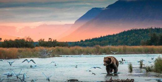 Katmai National Park and Preserve, Alaska, United States