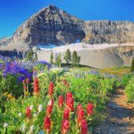 Wasatch Mountains, Utah, United States
