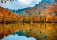 Yedigoller National Park, Bolu, Turkey