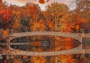 Central Park, New York City, United States