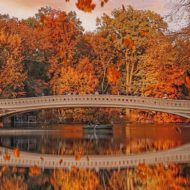 Central Park, New York City, United States