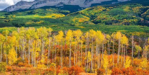 Autumn Colorado, United States